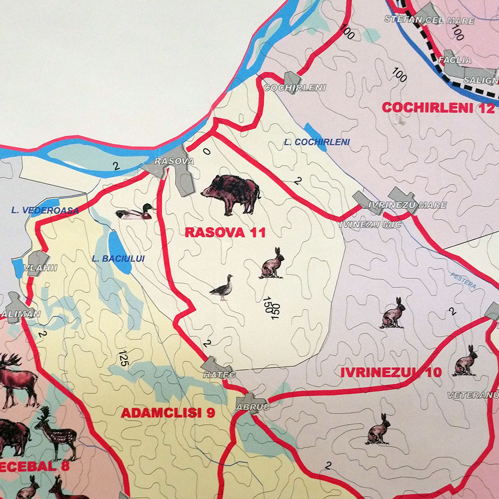 Fondul de vânătoare nr. 11 Rasova