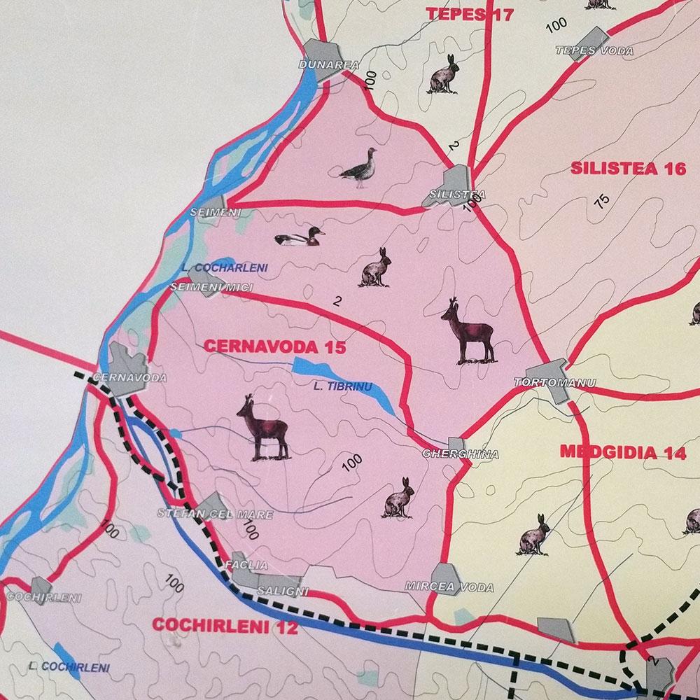 Fondul de vânătoare nr. 15 Cernavodă - AJVPS Constanța